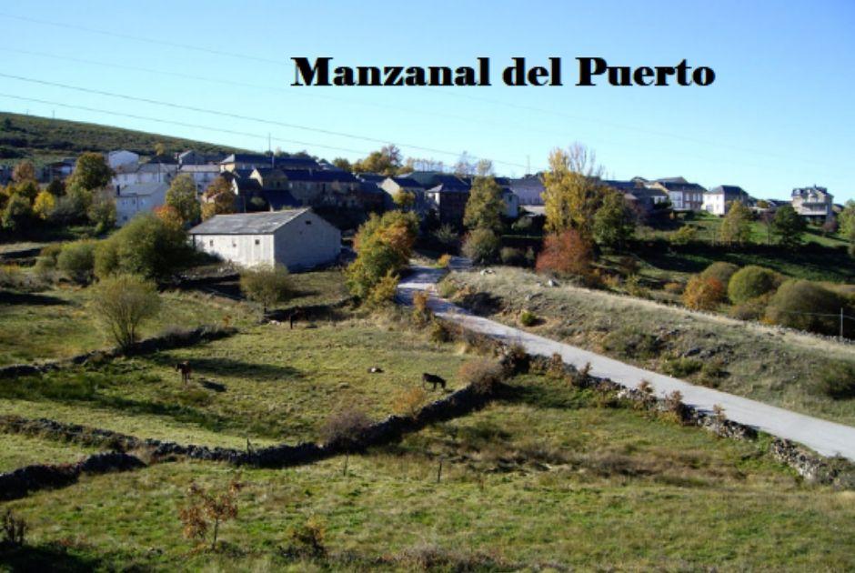 MANZANAL DEL PUERTO